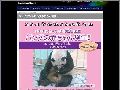 アドベンチャーワールドのパンダ誕生を知らせるホームページ記事